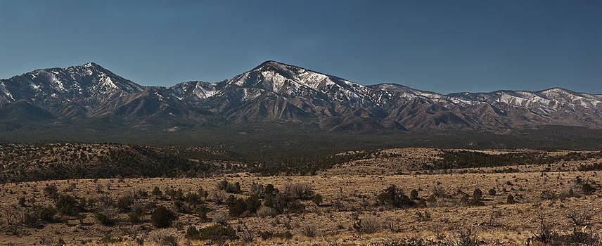 New Mexico Spring by Bob Bailey