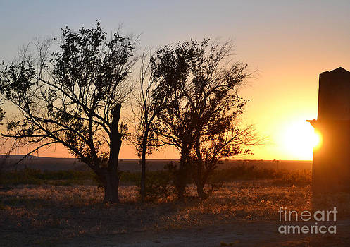 New Mexico Sunset by Carrie Cooper