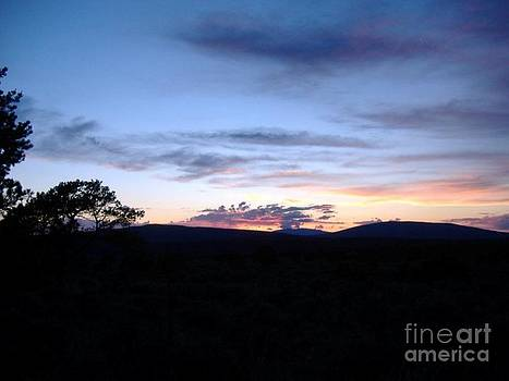 New Mexico Sunset by Donna Parlow