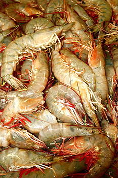 New Orleans shrimp by Amy Savell