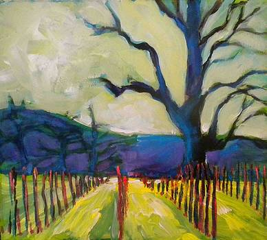 New Vineyard by Paula Strother