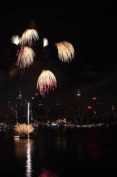 New York City 4th of July by Elena Ingram