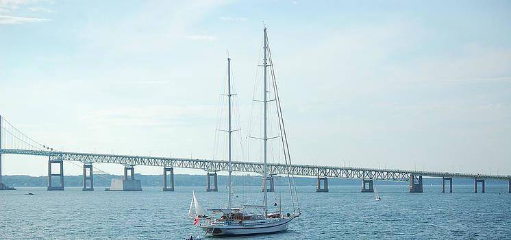 Newport RI Sailboat and Bridge by Mary McAvoy