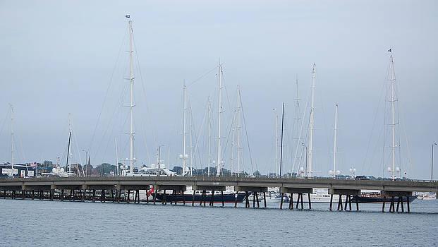 Newport RI Ship Masts by Mary McAvoy