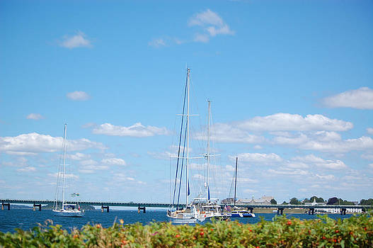 Newport RI Summertime by Mary McAvoy