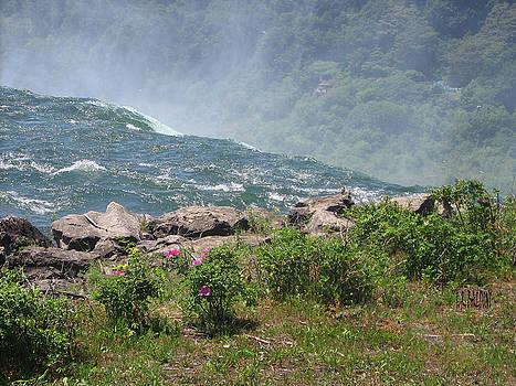 Niagara Falls Wonder of the World by J R Baldini M Photog