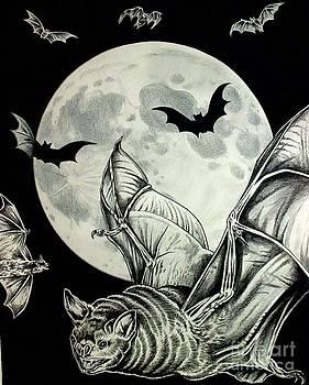 Night Flight by Kimberlee  Ketterman Edgar