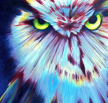 Night Owl by Joan Pollak