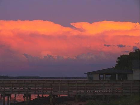 Night Sky at Lake Marion - Santee State Park by Kathleen Palermo