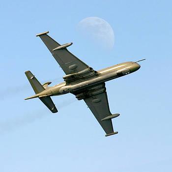 Nimrod flight by David McFarland