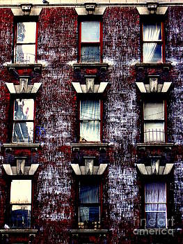 Nine  Windows by Maria Scarfone