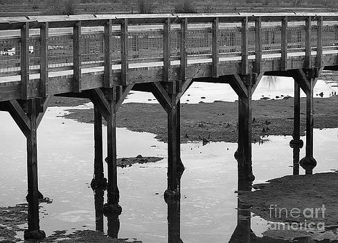 Nisqually Boardwalk at Low Tide by Michael Wyatt