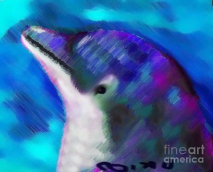 Nixo Dolphin by Nicholas Nixo