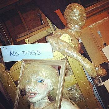 No Dogs by Rachael Sansing