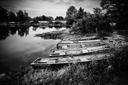 No Fishing by James Bull