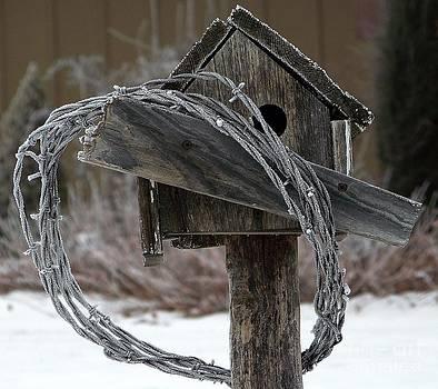 Nobody Home by Dorrene BrownButterfield