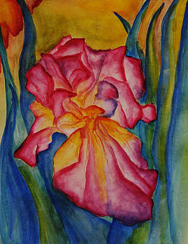 Nora's Garden by Cyrene Swallow
