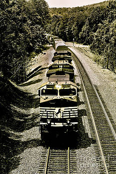Norfolk Southern Northbound by Mark East