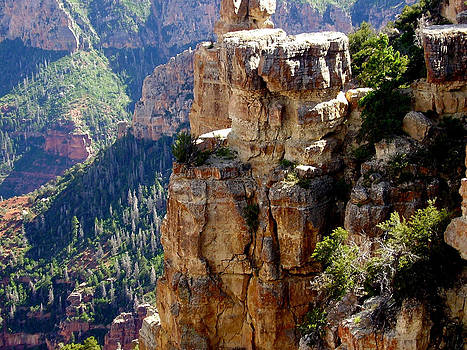 Diana Cox - North Rim