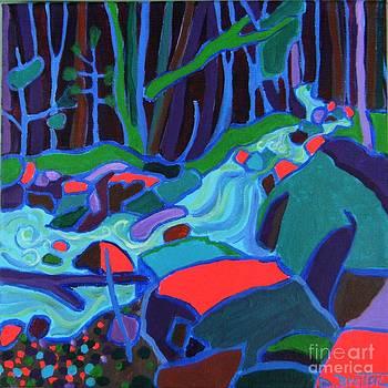 North Woods River by Debra Bretton Robinson