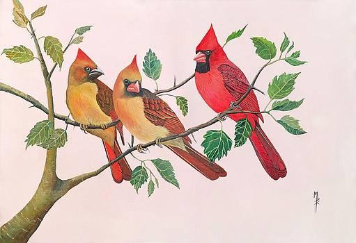 Northern Cardinals by Marsha Friedman