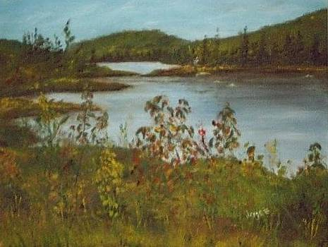 Northern lake by Joyce Reid