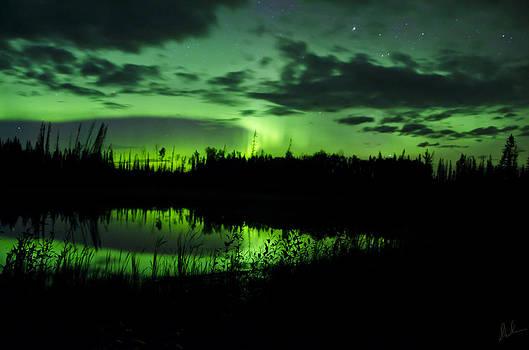 Northern Skies by Steve  Milner