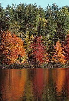 Northwoods Reflection by Dick Todd