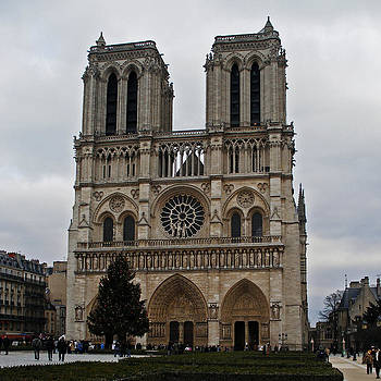 David Pringle - Notre Dame de Paris
