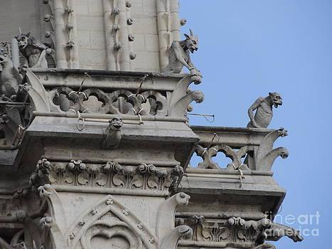 Notre Dame of Paris by Geraldine Liquidano