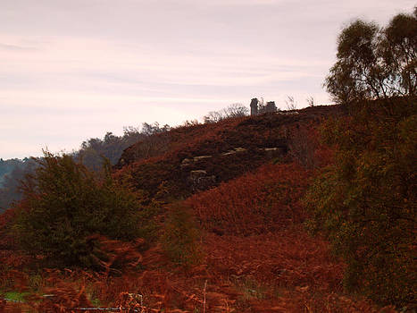 Nought Moor and Yorkes Folly by Steve Watson