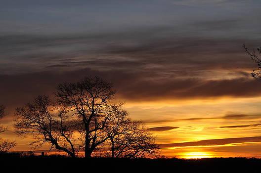 November Sunrise by Peter  McIntosh