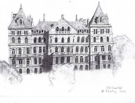 NY Capital by Tonia Darling