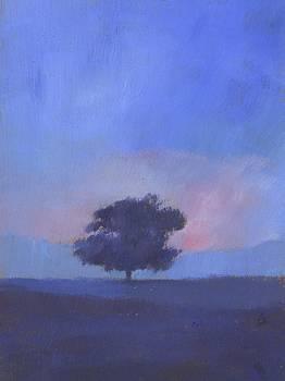 Oak Tree Sunset by Alan Daysh