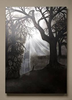 Oak Trees in Fog by Laura  Hering