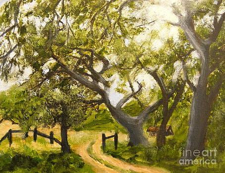 Oaks by Julie Sauer