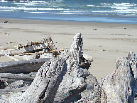 Baslee Troutman - Ocean Beach Driftwood art prints Coastal Shore