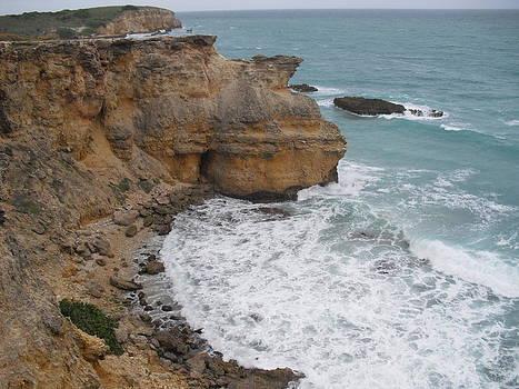 Ocean Cliffs by Melissa Torres
