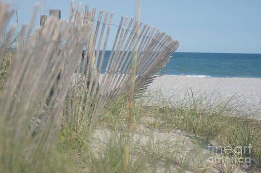 Ocean Fence by Nicholas Pena