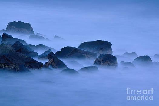 Ocean Mist by Ekaterina LaBranche