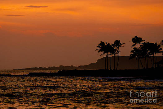 Darcy Michaelchuk - Ocean Sunset with Palm Tree Silhouette