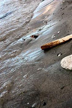 Ocean's Edge by Tanya Peters