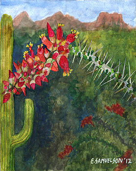 Ocotillo Spring by Eric Samuelson