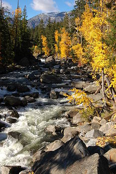 October at Icicle Creek by Wanda Jesfield