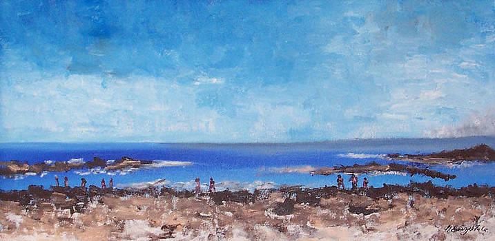 Odiorne beach Park NH by Michel Croteau