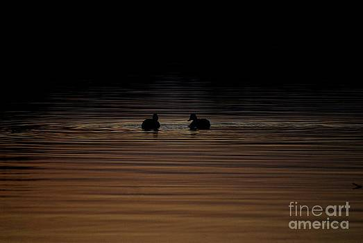 Off Into The Darkness by Crissy Sherman