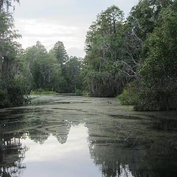 Cathy Lindsey - Okefenokee Swamp 19