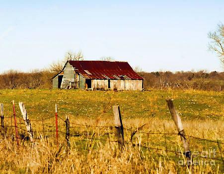 Diana Cox - Oklahoma Barn