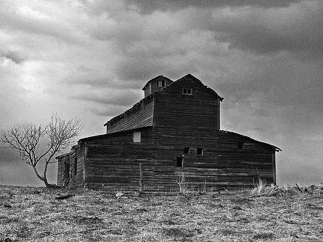 Old Barn BW by Sandra Longstreet
