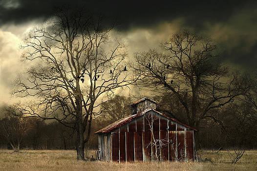 Old Barn by Hazel Billingsley